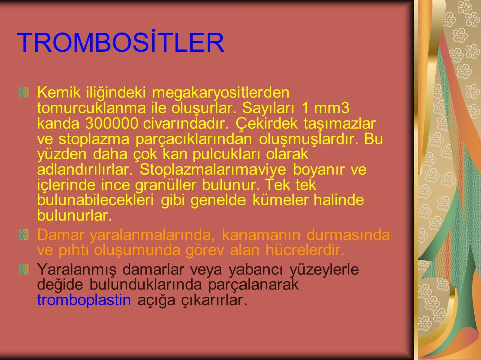 TROMBOSİTLER