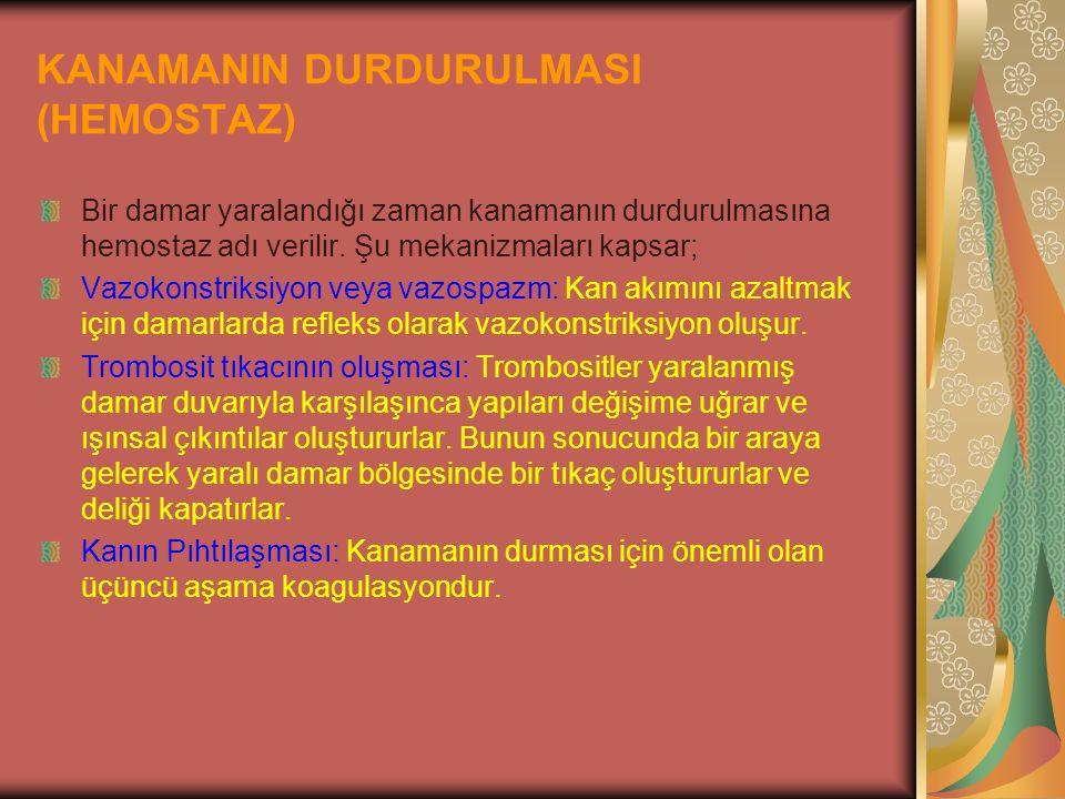 KANAMANIN DURDURULMASI (HEMOSTAZ)