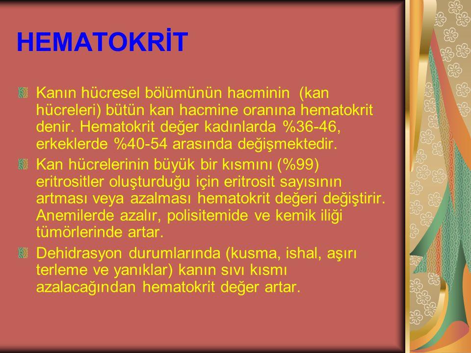 HEMATOKRİT