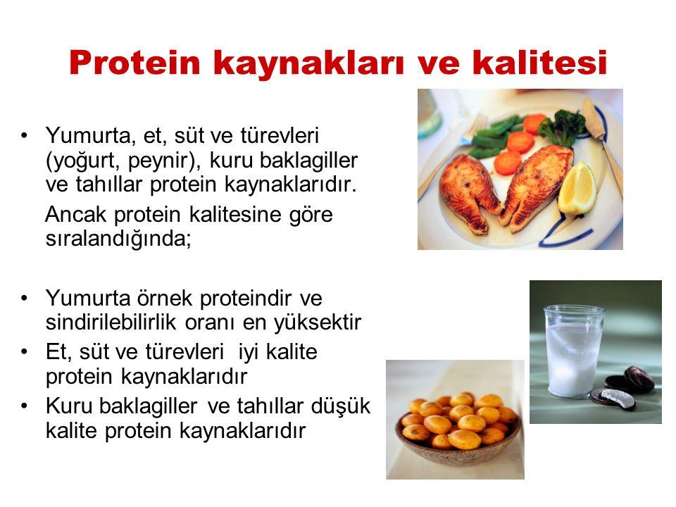 Protein kaynakları ve kalitesi