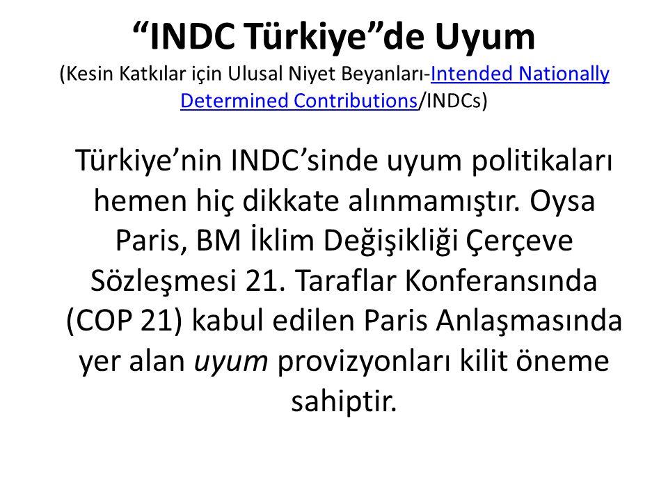 INDC Türkiye de Uyum (Kesin Katkılar için Ulusal Niyet Beyanları-Intended Nationally Determined Contributions/INDCs)