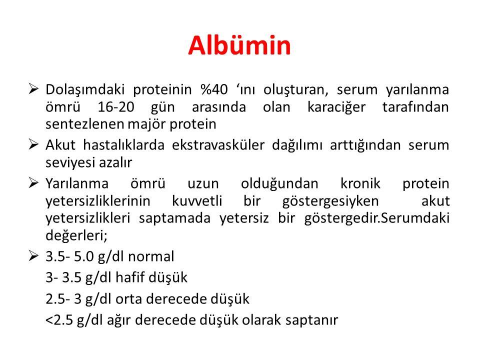 Albümin Dolaşımdaki proteinin %40 'ını oluşturan, serum yarılanma ömrü 16-20 gün arasında olan karaciğer tarafından sentezlenen majör protein.