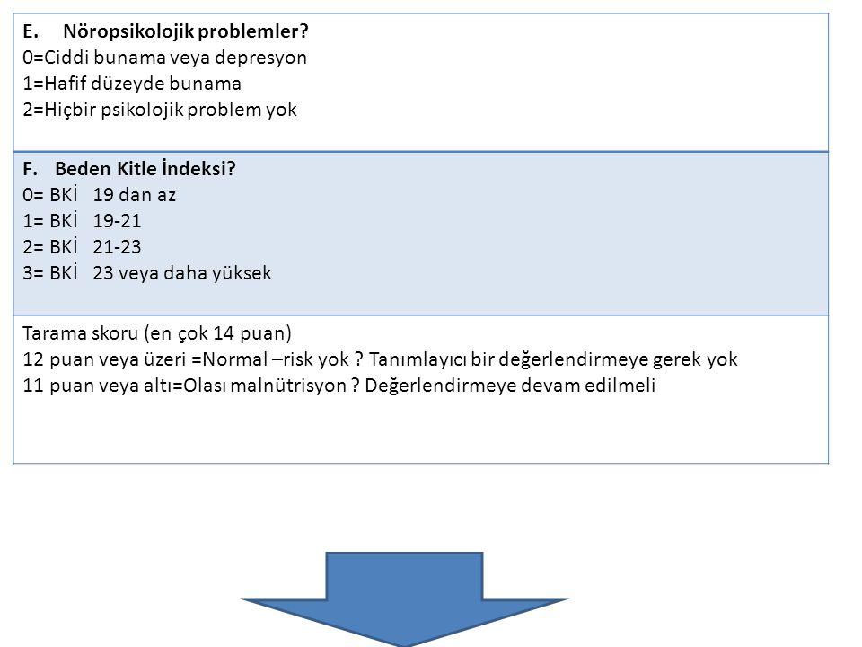 E. Nöropsikolojik problemler
