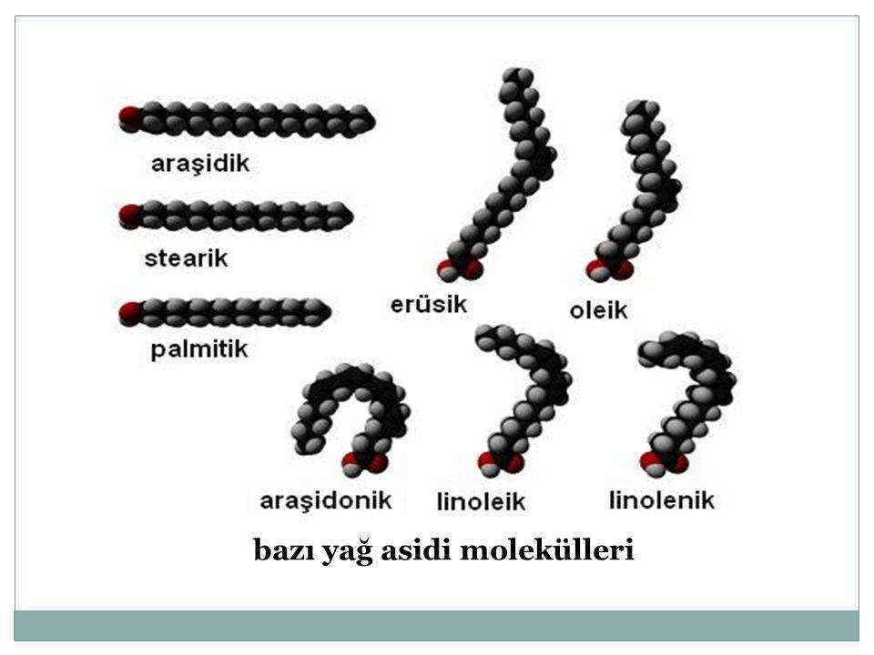 bazı yağ asidi molekülleri