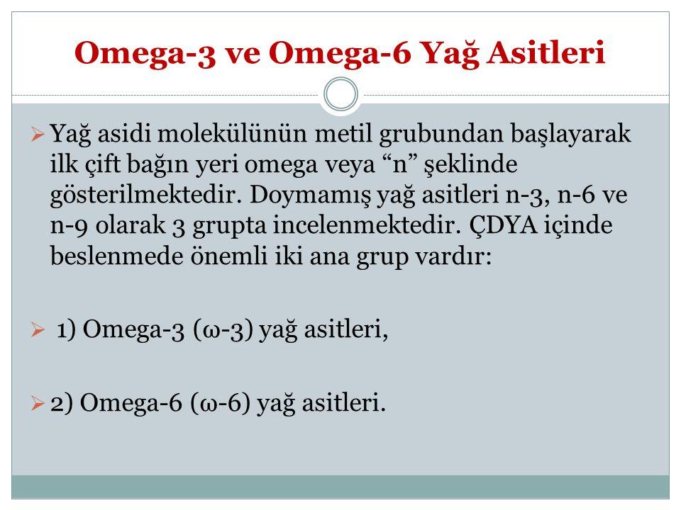 Omega-3 ve Omega-6 Yağ Asitleri
