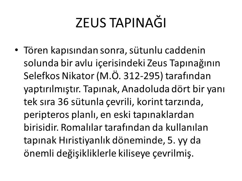 ZEUS TAPINAĞI