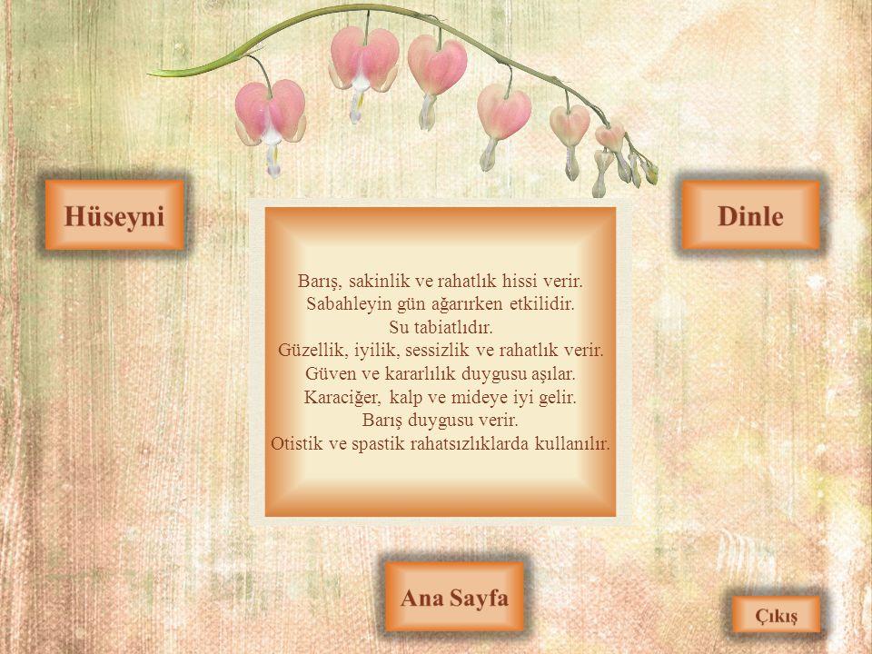 Hüseyni Dinle Ana Sayfa