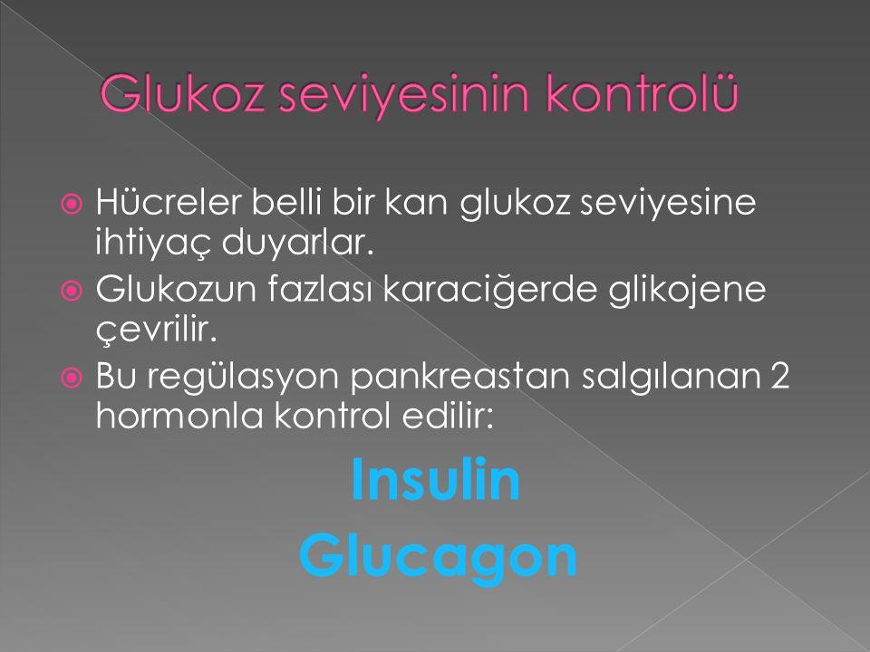 Glukoz seviyesinin kontrolü