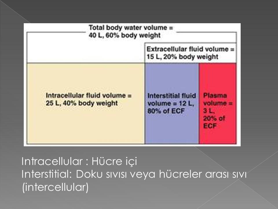 Intracellular : Hücre içi
