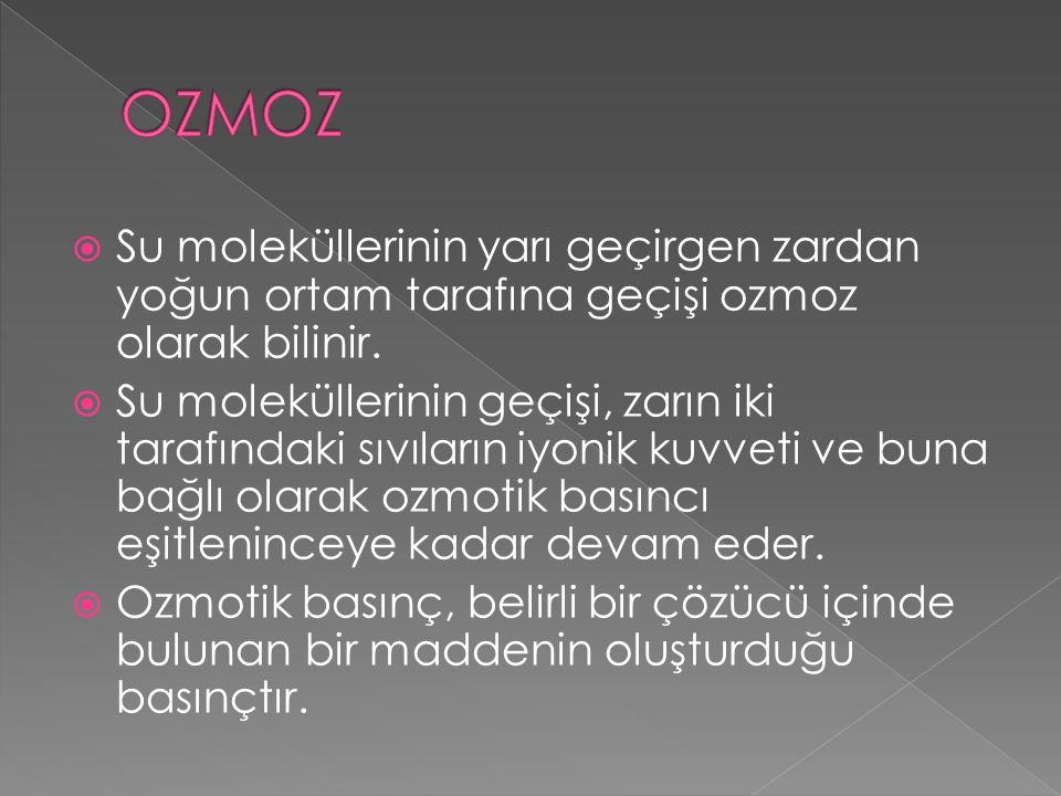 OZMOZ Su moleküllerinin yarı geçirgen zardan yoğun ortam tarafına geçişi ozmoz olarak bilinir.
