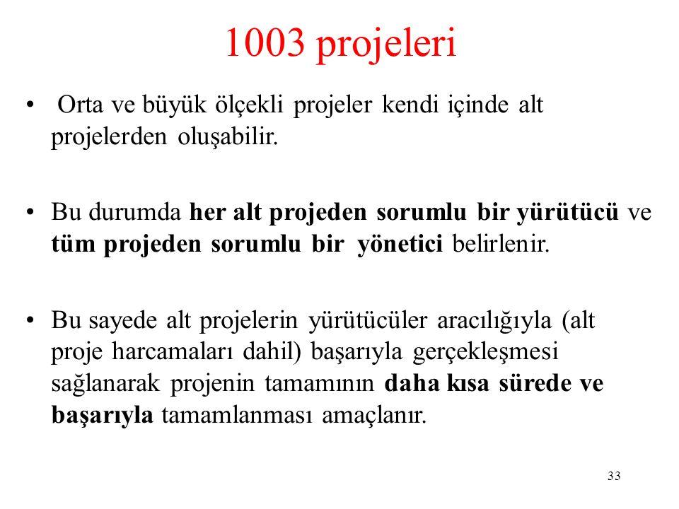 1003 projeleri Orta ve büyük ölçekli projeler kendi içinde alt projelerden oluşabilir.