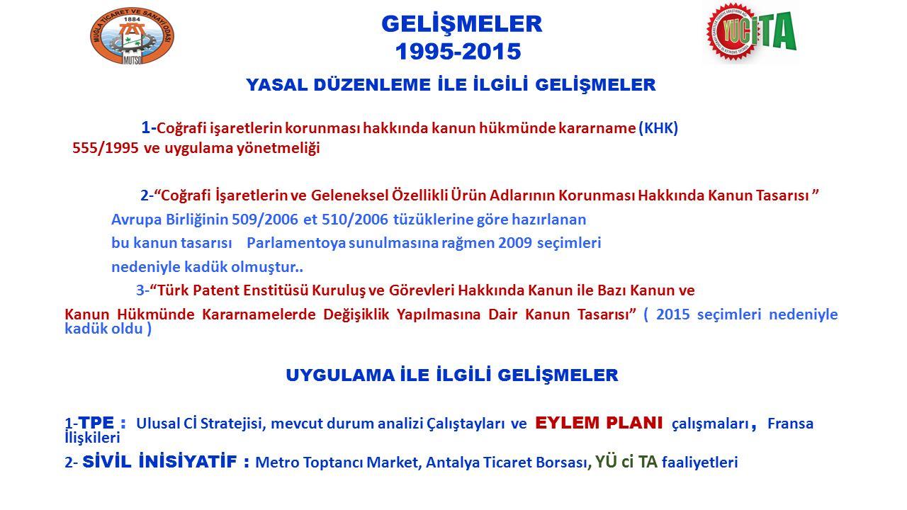 GELİŞMELER 1995-2015 YASAL DÜZENLEME İLE İLGİLİ GELİŞMELER.