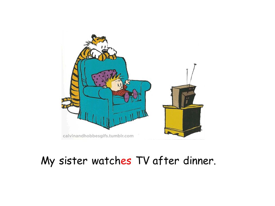 My sister watches TV after dinner.