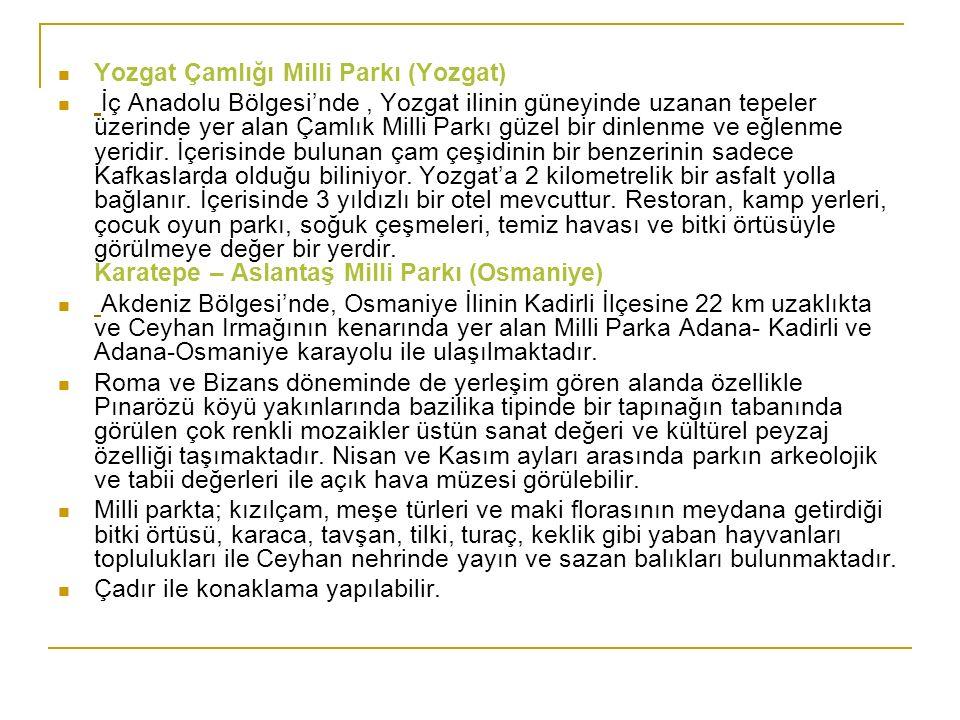 Yozgat Çamlığı Milli Parkı (Yozgat)