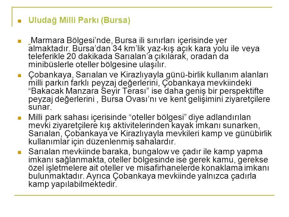 Uludağ Milli Parkı (Bursa)