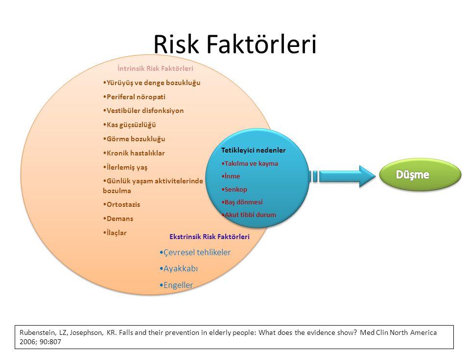 İntrinsik Risk Faktörleri Ekstrinsik Risk Faktörleri