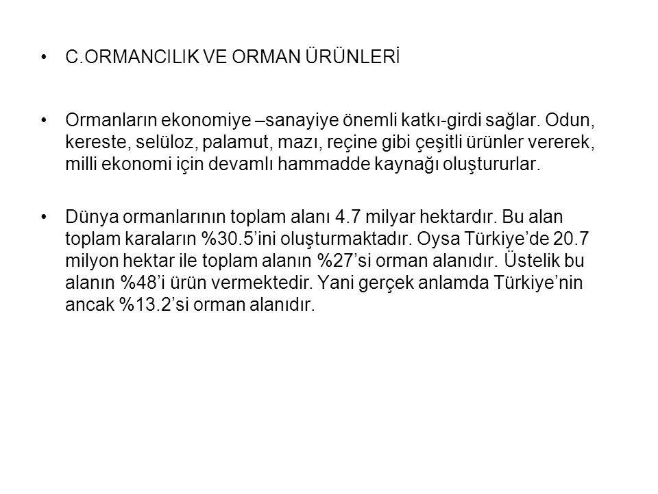 C.ORMANCILIK VE ORMAN ÜRÜNLERİ