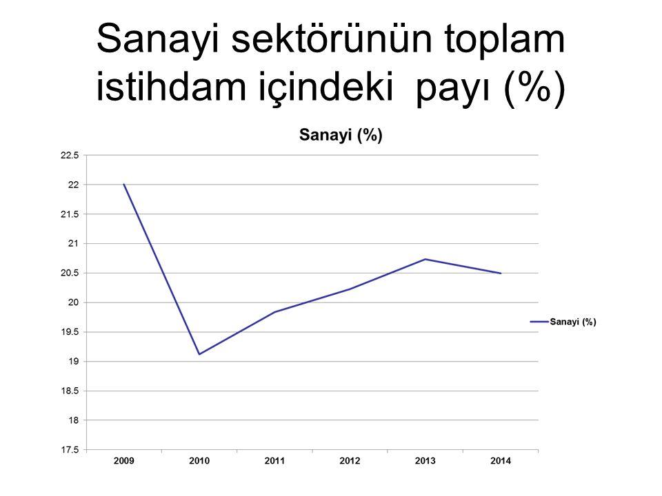 Sanayi sektörünün toplam istihdam içindeki payı (%)