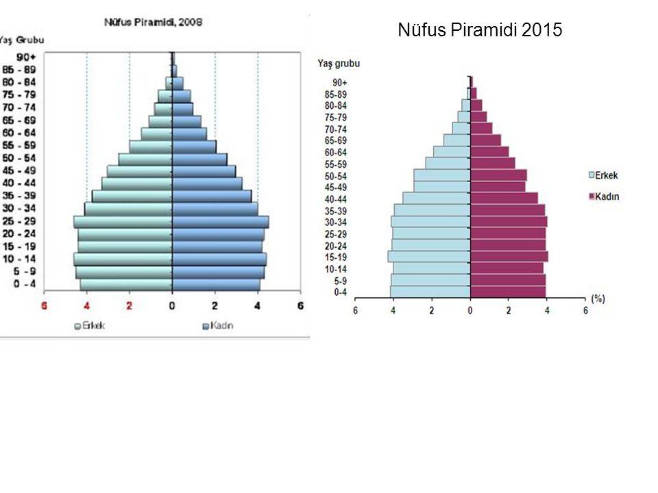 Nüfus Piramidi 2015