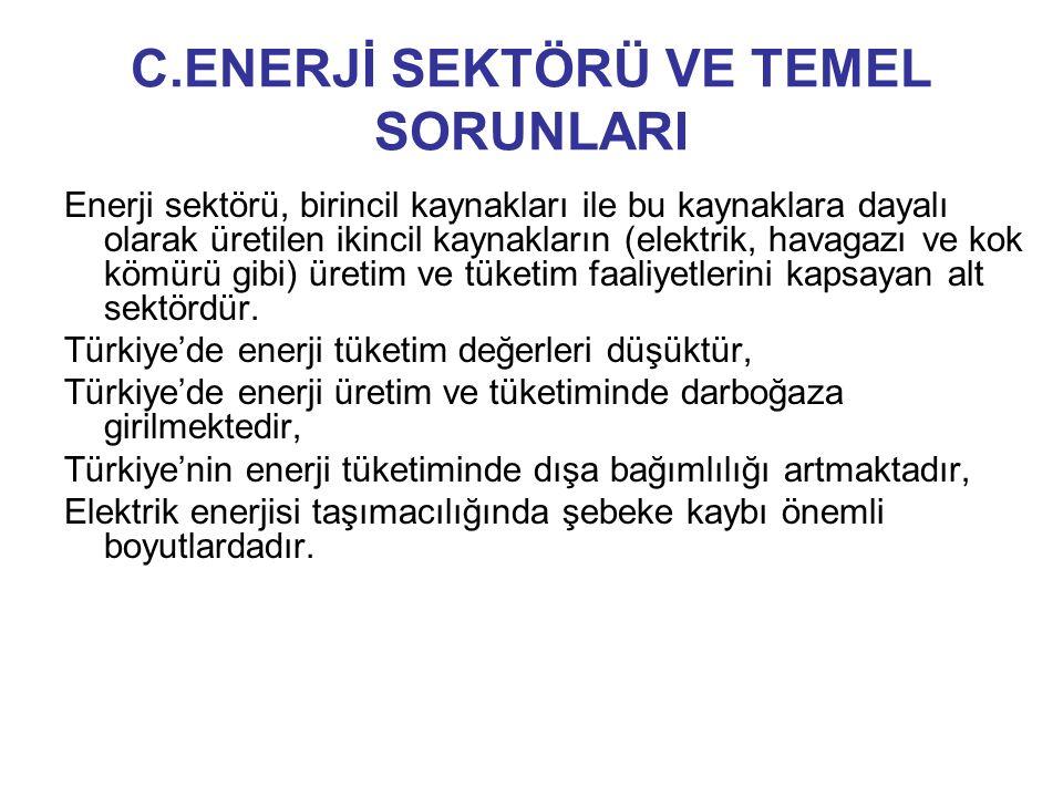 C.ENERJİ SEKTÖRÜ VE TEMEL SORUNLARI