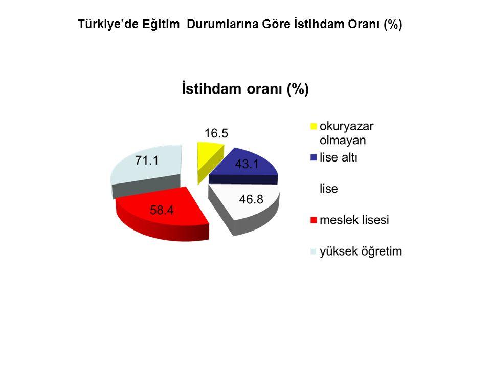 Türkiye'de Eğitim Durumlarına Göre İstihdam Oranı (%)