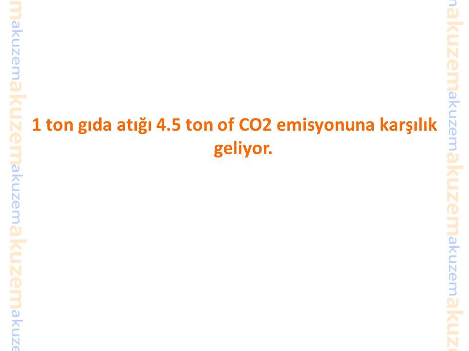 1 ton gıda atığı 4.5 ton of CO2 emisyonuna karşılık geliyor.