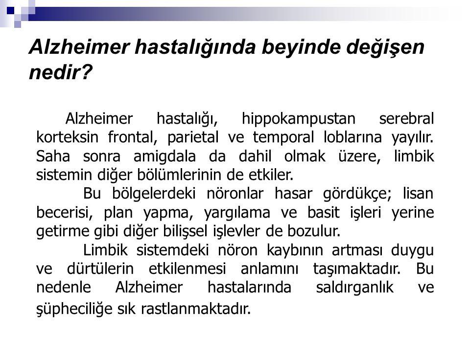 Alzheimer hastalığında beyinde değişen nedir