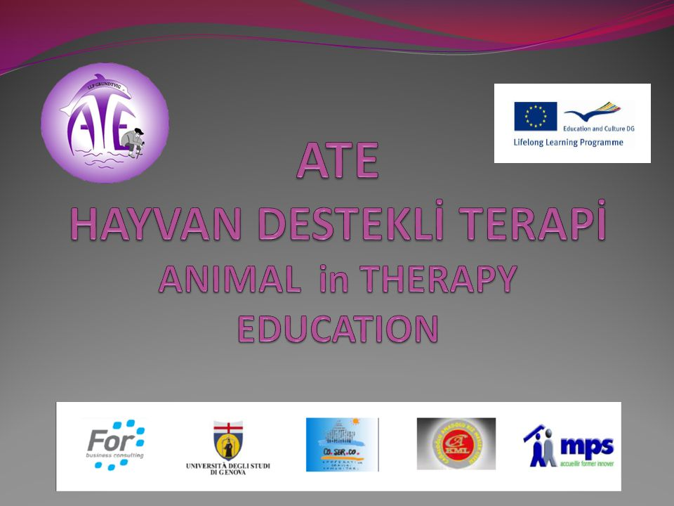 ATE HAYVAN DESTEKLİ TERAPİ ANIMAL in THERAPY EDUCATION