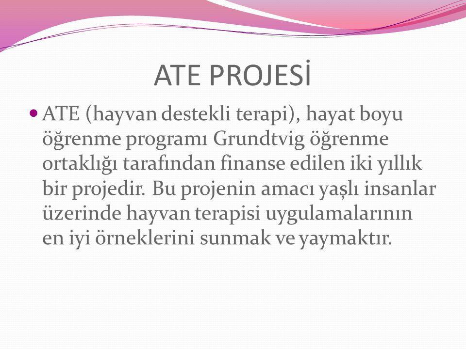 ATE PROJESİ
