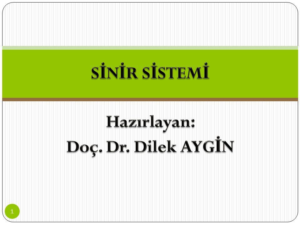 SİNİR SİSTEMİ Hazırlayan: Doç. Dr. Dilek AYGİN