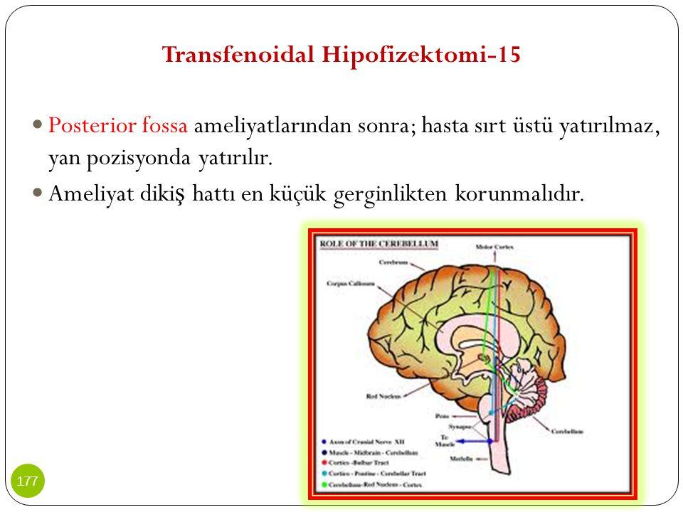 Transfenoidal Hipofizektomi-15