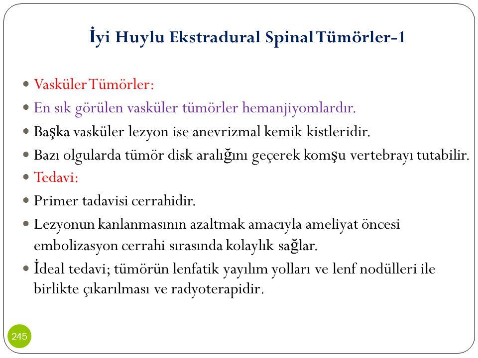 İyi Huylu Ekstradural Spinal Tümörler-1