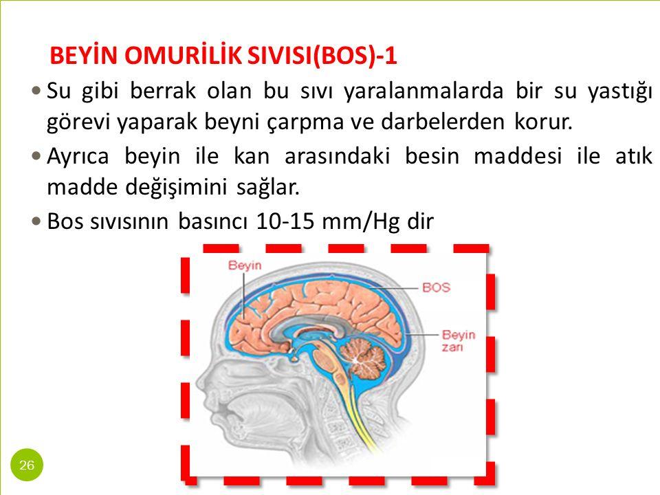 BEYİN OMURİLİK SIVISI(BOS)-1