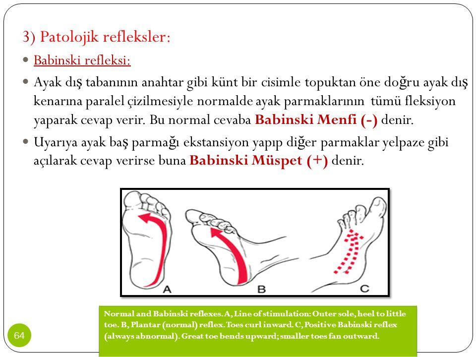 3) Patolojik refleksler: