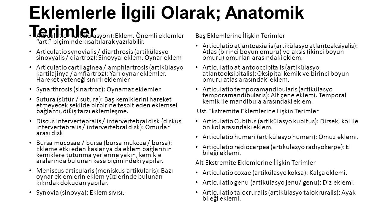 Eklemlerle İlgili Olarak; Anatomik Terimler
