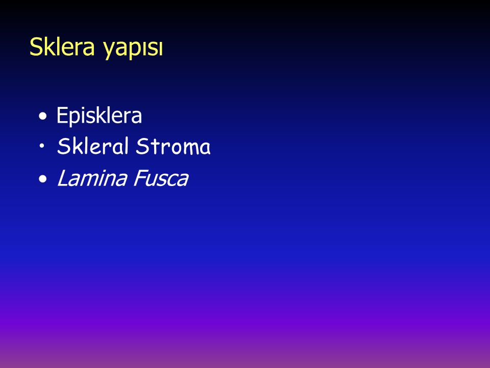Sklera yapısı Episklera Skleral Stroma Lamina Fusca Episklera:
