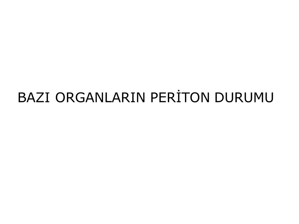 BAZI ORGANLARIN PERİTON DURUMU