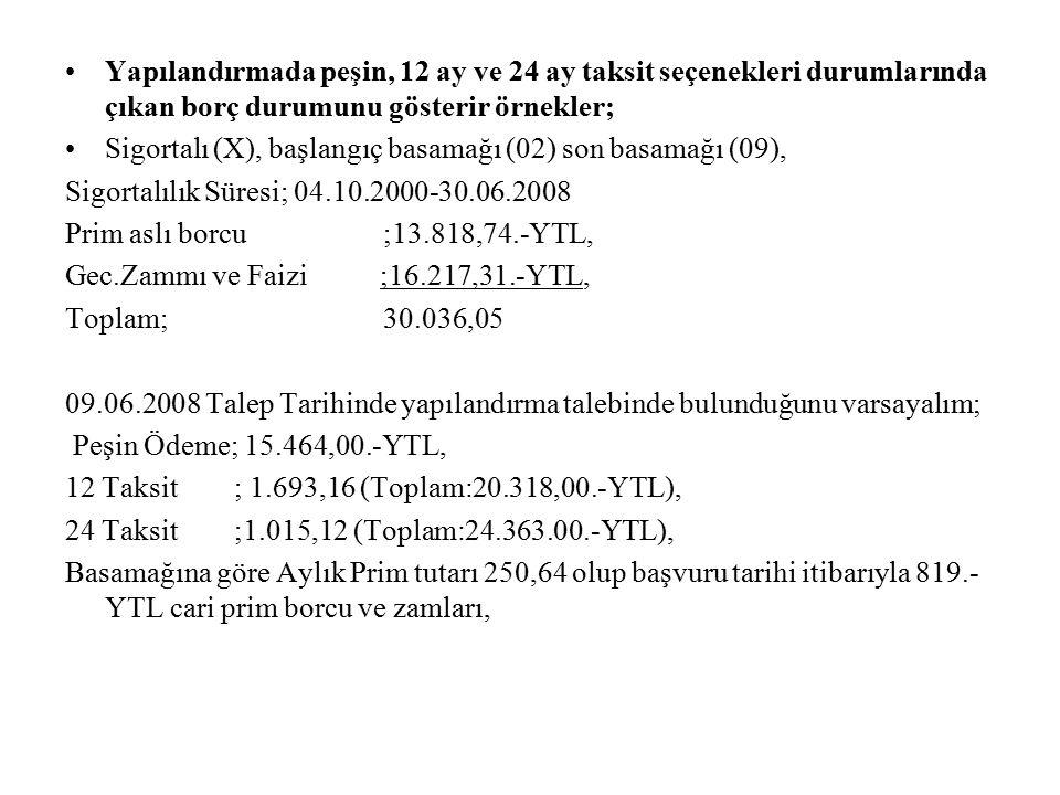 Yapılandırmada peşin, 12 ay ve 24 ay taksit seçenekleri durumlarında çıkan borç durumunu gösterir örnekler;