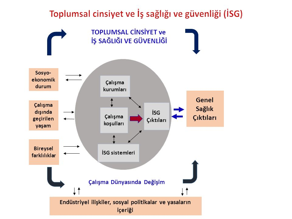 Toplumsal cinsiyet ve İş sağlığı ve güvenliği (İSG)