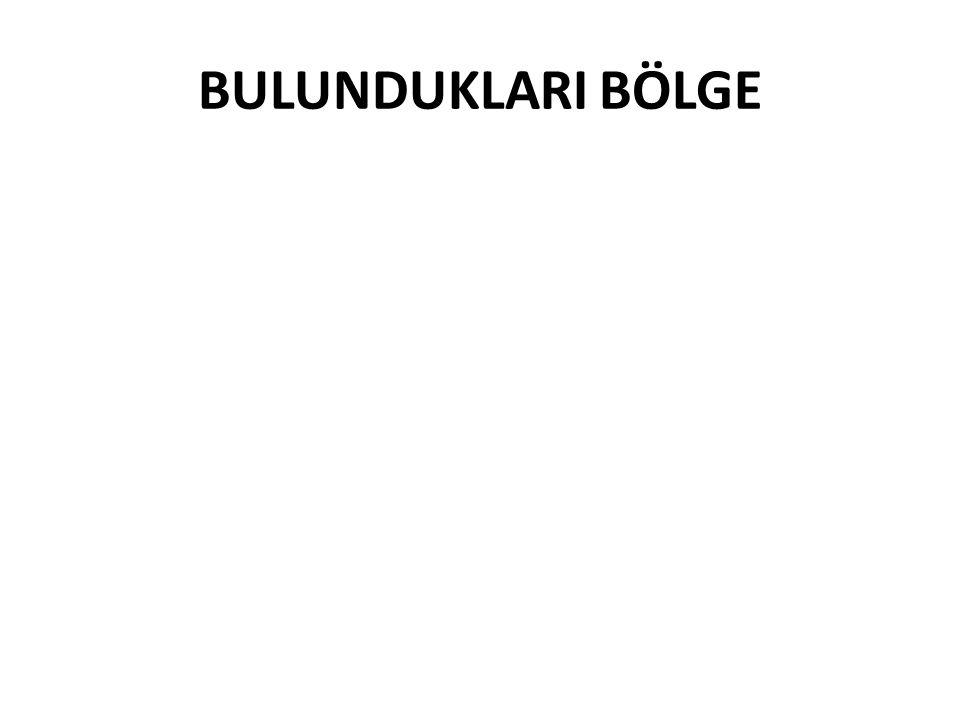 BULUNDUKLARI BÖLGE