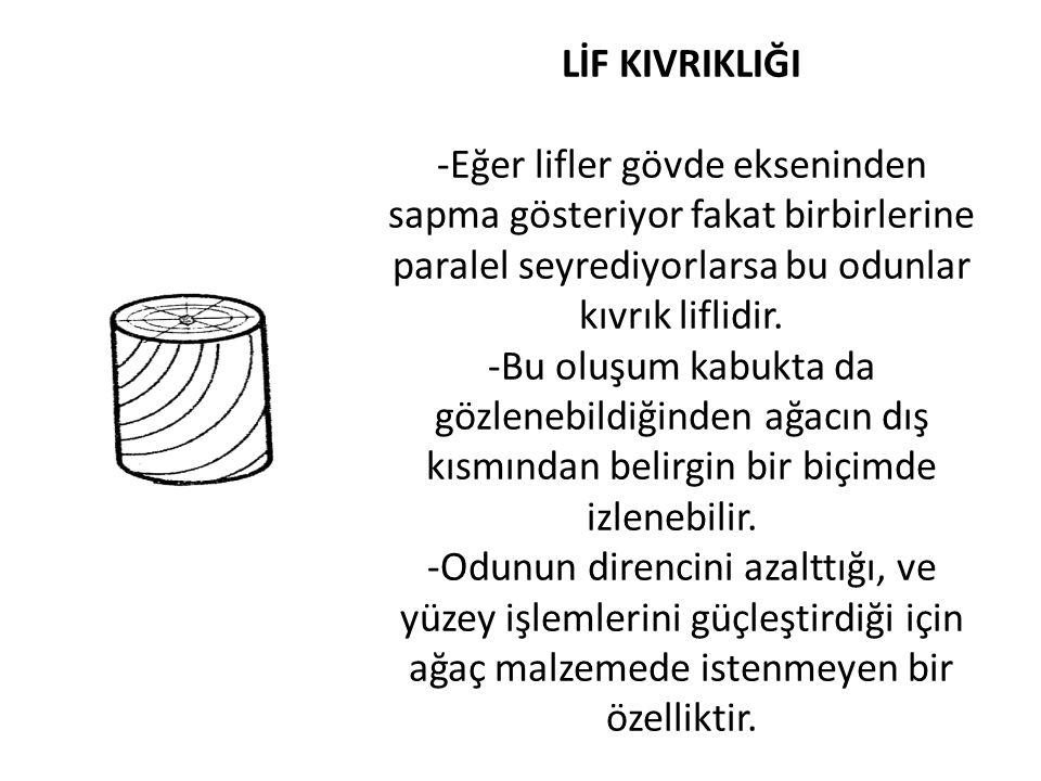 LİF KIVRIKLIĞI -Eğer lifler gövde ekseninden sapma gösteriyor fakat birbirlerine paralel seyrediyorlarsa bu odunlar kıvrık liflidir.