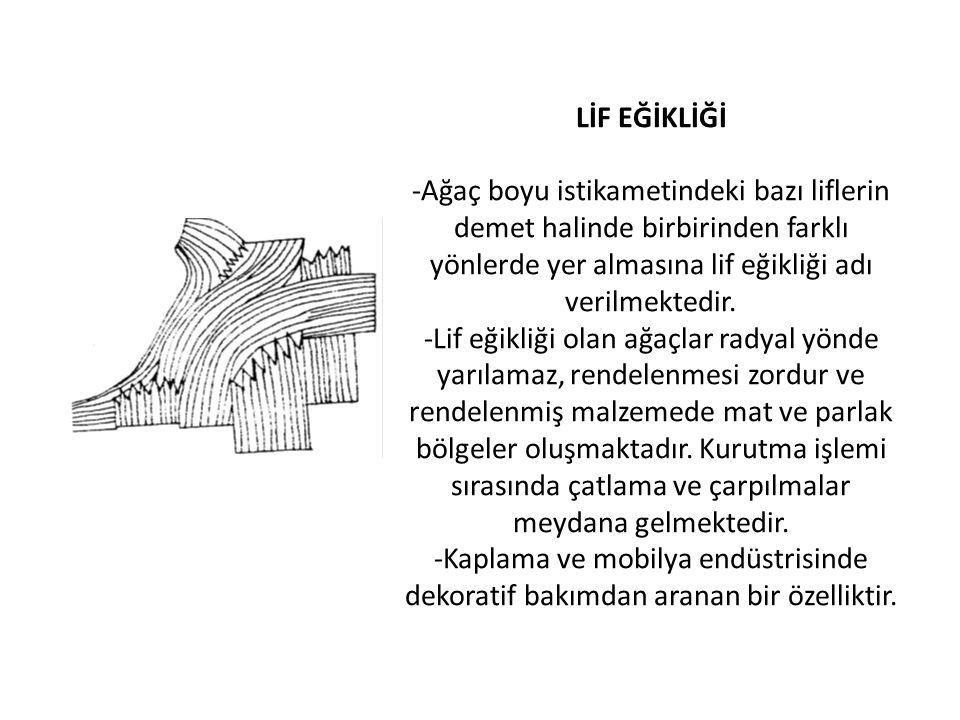 LİF EĞİKLİĞİ -Ağaç boyu istikametindeki bazı liflerin demet halinde birbirinden farklı yönlerde yer almasına lif eğikliği adı verilmektedir.