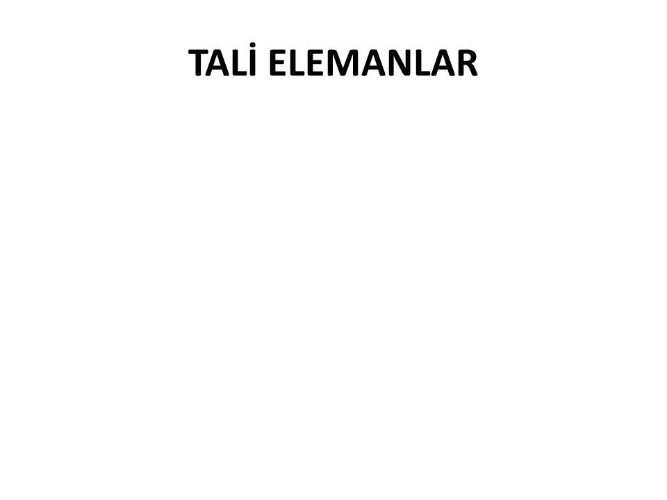 TALİ ELEMANLAR