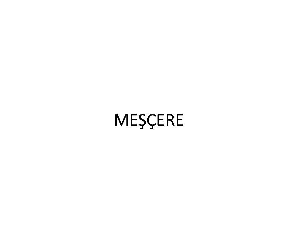 MEŞÇERE