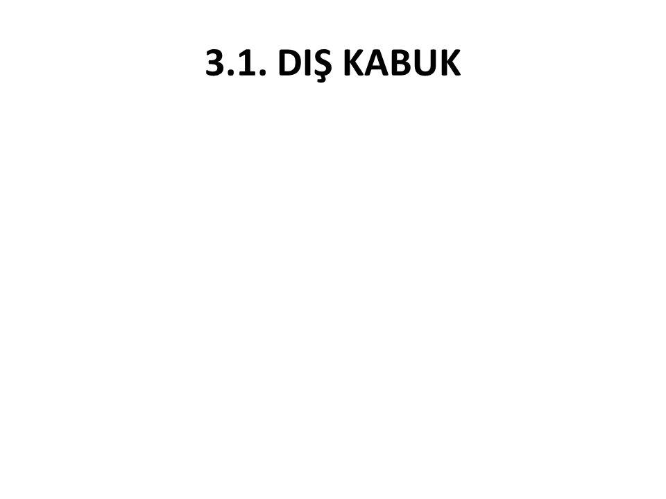 3.1. DIŞ KABUK