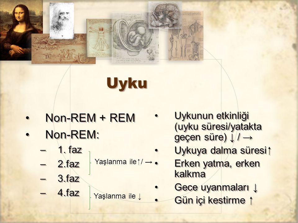 Uyku Non-REM + REM Non-REM: