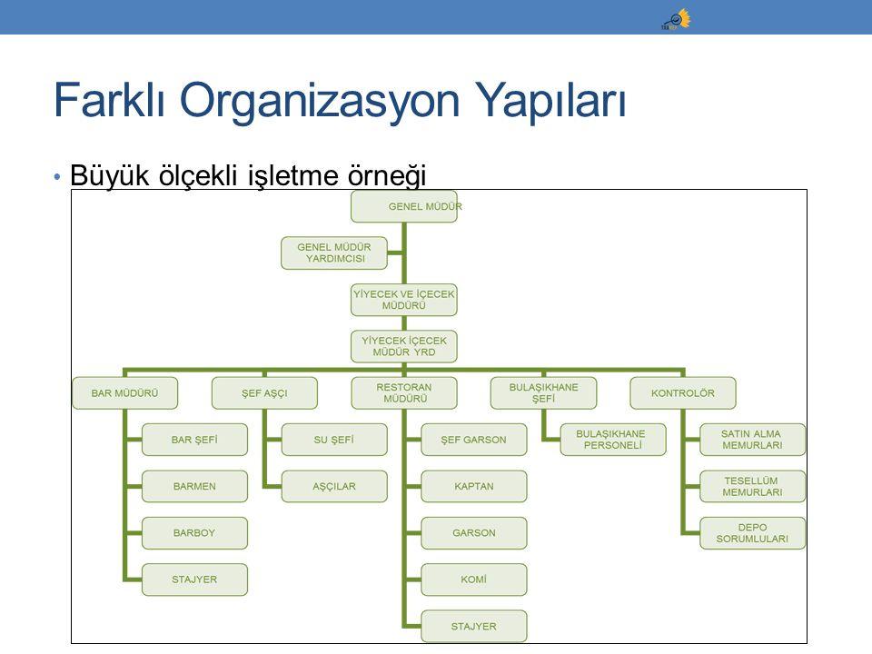 Farklı Organizasyon Yapıları