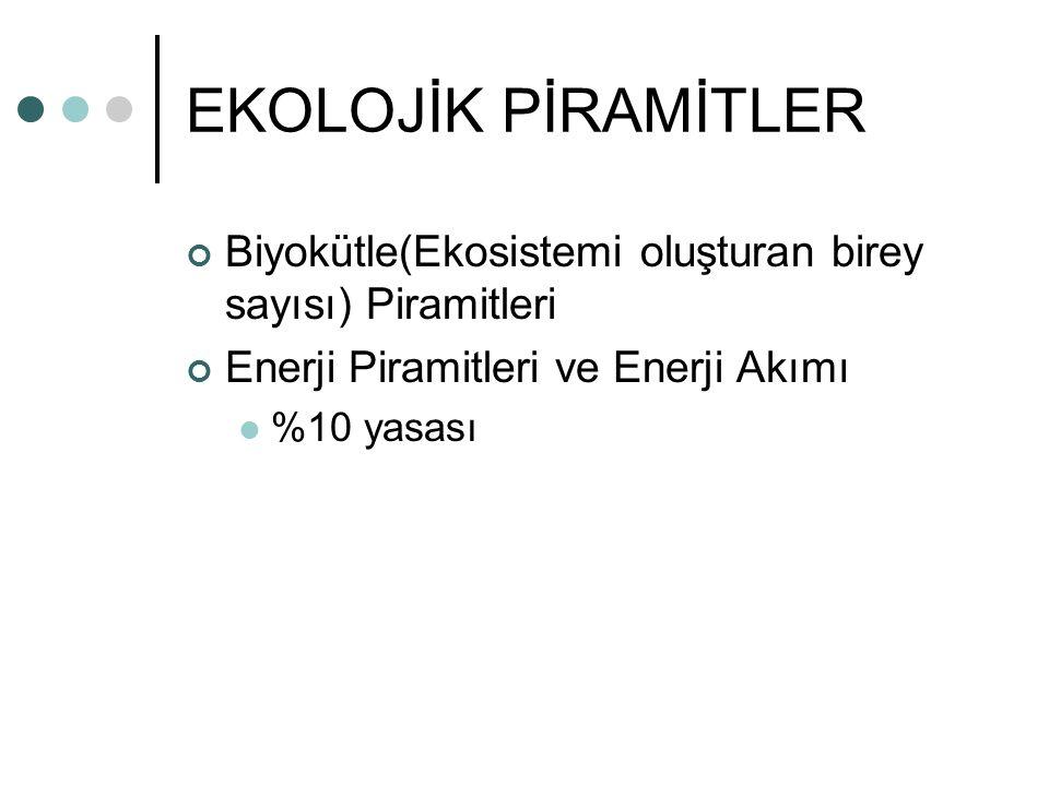 EKOLOJİK PİRAMİTLER Biyokütle(Ekosistemi oluşturan birey sayısı) Piramitleri. Enerji Piramitleri ve Enerji Akımı.