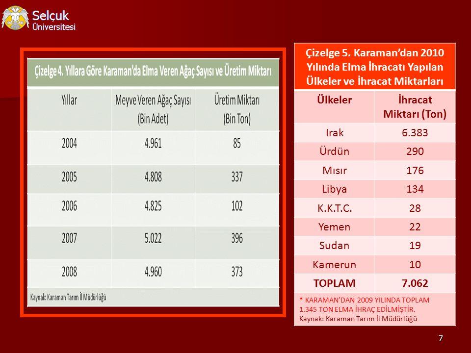 Çizelge 5. Karaman'dan 2010 Yılında Elma İhracatı Yapılan Ülkeler ve İhracat Miktarları