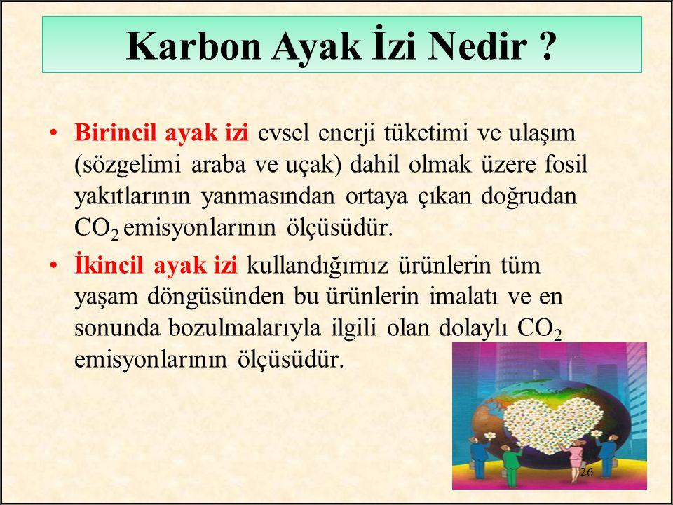 Karbon Ayak İzi Nedir